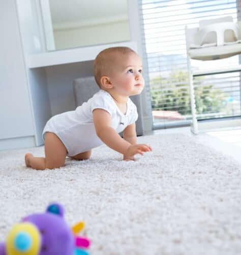 Save Up to 60% on Denver Carpeting |Sloane's Carpet Secret