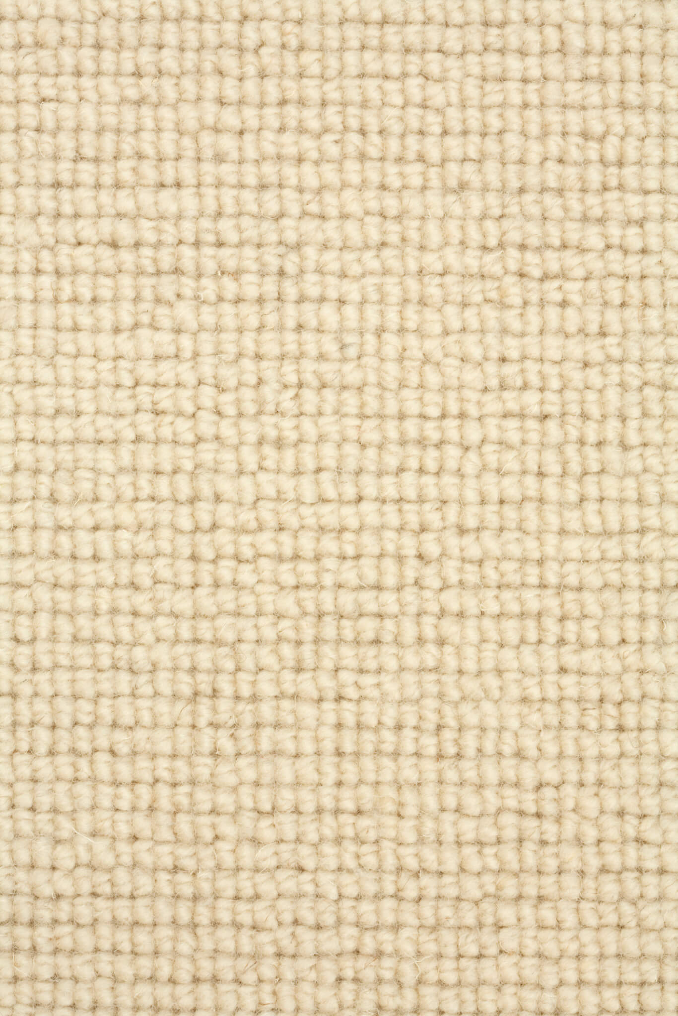 Carpet Textile background - Carpet Gallery