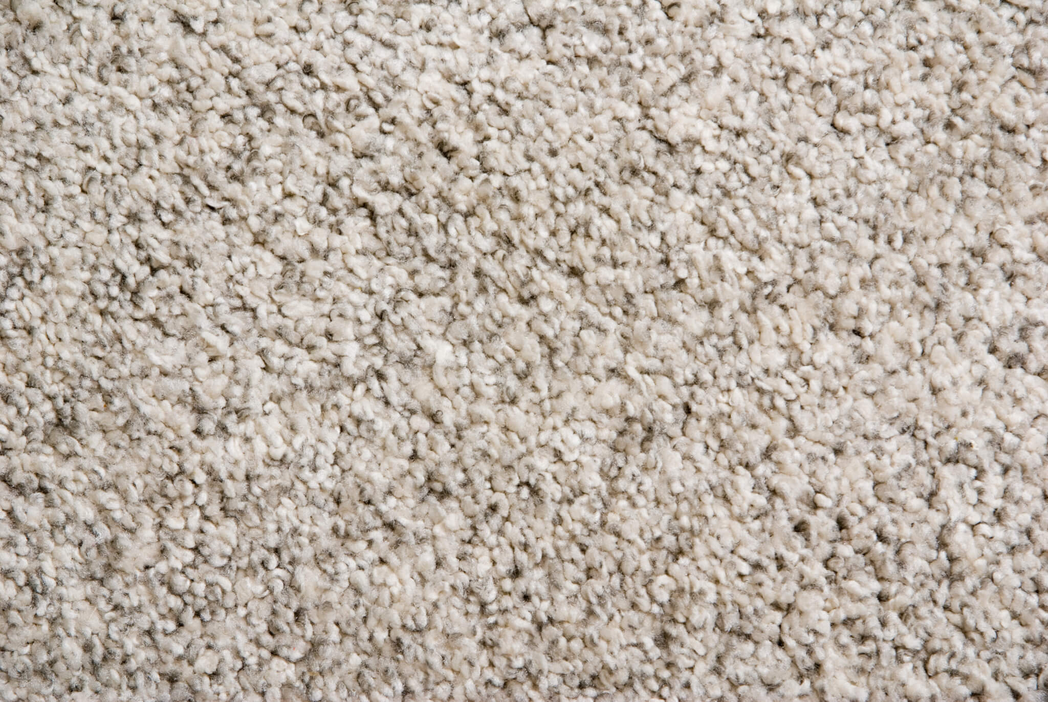 Closeup beige fluffy carpet - Carpet Gallery