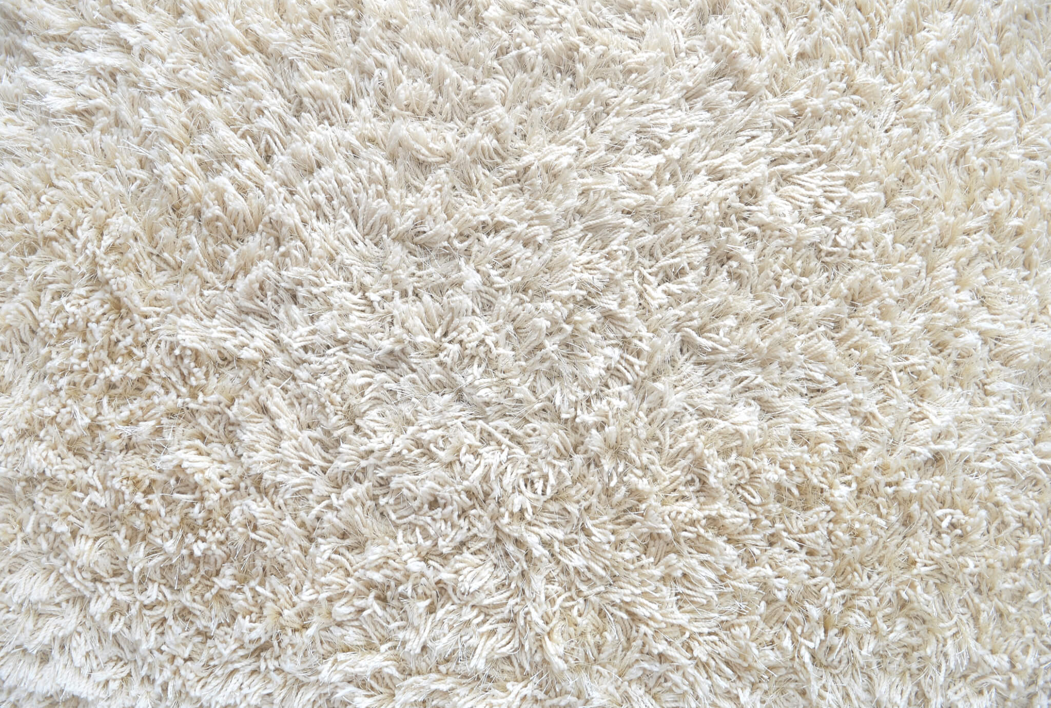 White carpet - Carpet Gallery