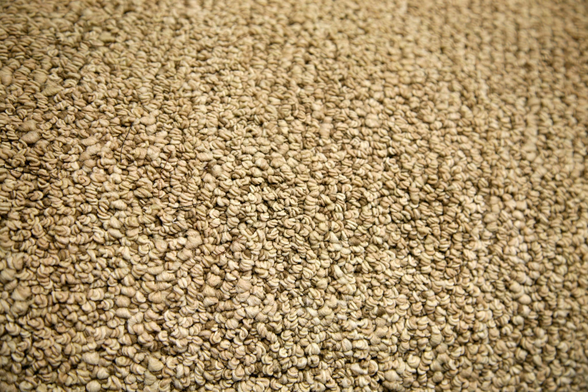 Close-up of texture of carpet - Carpet Gallery