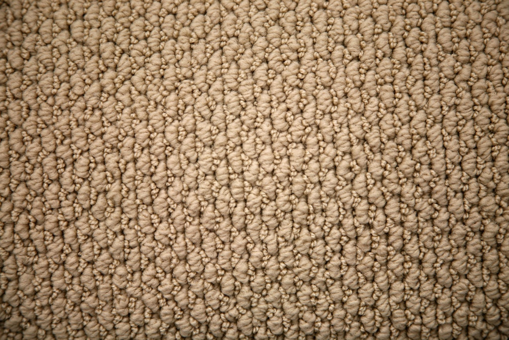 Close-up of beige carpet - Carpet Gallery
