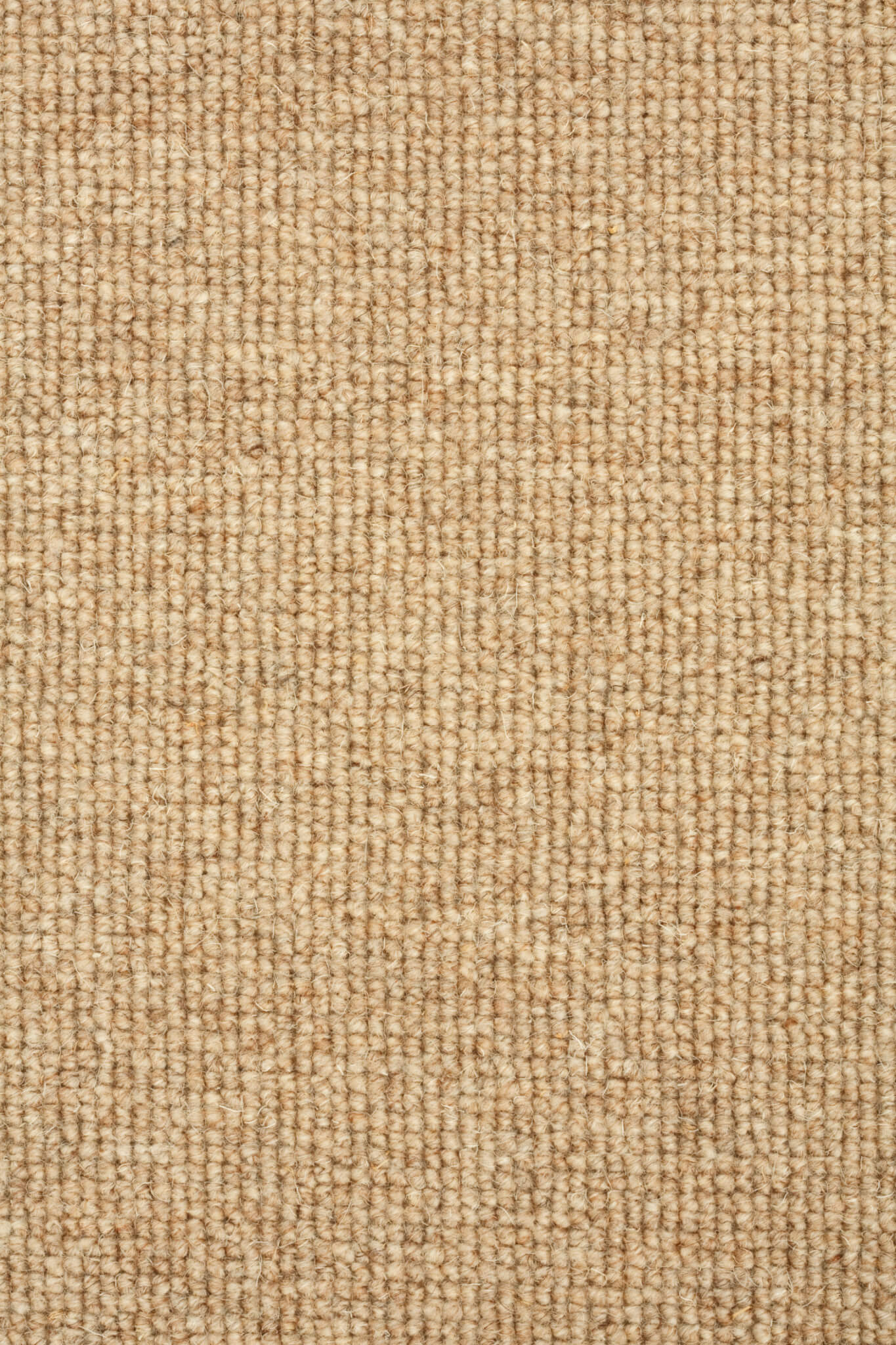 Detail of a neutral colored loop pile carpet - Carpet Gallery