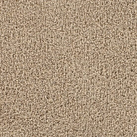 Textured Plush Carpet Sample